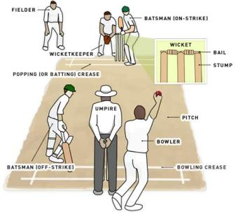 what-is-cricket